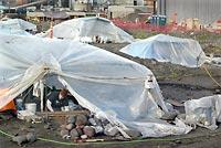 A worker exhumes remains inside one of many tents covering graves of tribal ancestors so work can continue on a dry-dock project in Port Angeles. The state walked away from the site after spending $60 million and disturbing 335 intact burials. The rocks with red tape are headstones found with the remains and will be reburied with them.
