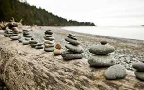 A series of small stone cairns is lined up on driftwood at West Point.